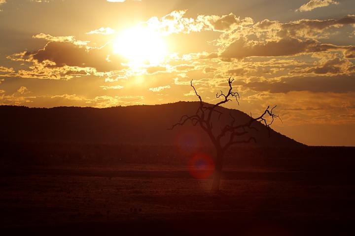 suedafrika_lina_mallon_reisebericht_23