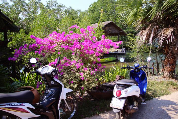 kohchang_lina_mallon_inselhopping_thailand_3467