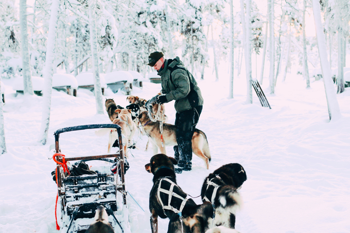 WEB_Ivalo_Husky_Lappland_Tour_lina_mallon-7844