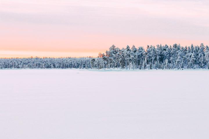 WEB_Ivalo_Husky_Lappland_Tour_lina_mallon-7850