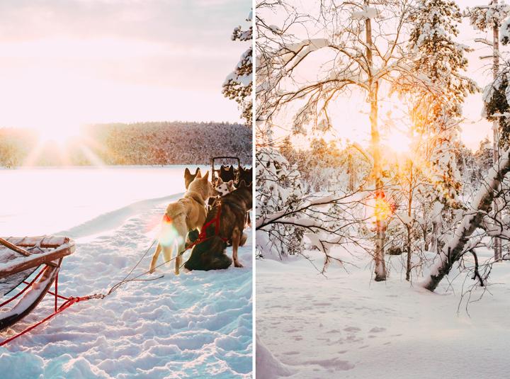 WEB_Ivalo_Husky_Lappland_Tour_lina_mallon-7917