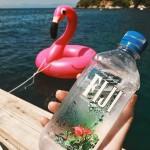 Look who arrived  Der Flamingo lebt jetzt in Gefangenschafthellip