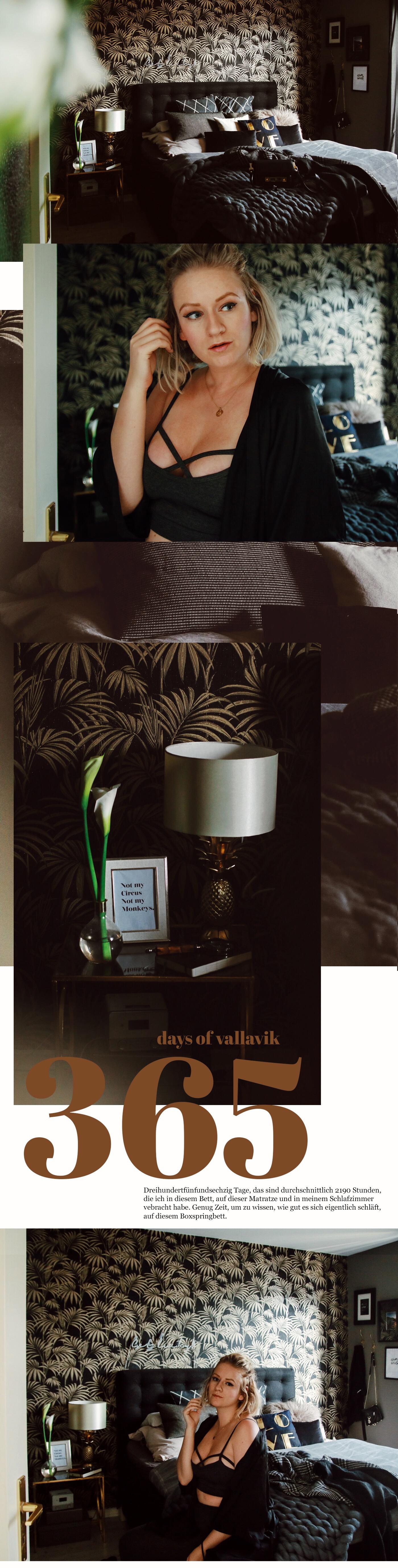 365 tage vallavik warum ich mir ein boxsprinbett gekauft habe lina mallon. Black Bedroom Furniture Sets. Home Design Ideas